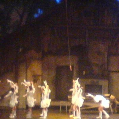 spectacle nocturnologie (6)