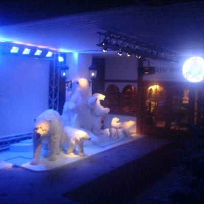 Spectacle nocturnologie 15